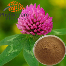 Natural Red Clover Extract Powder/Red Clover P.E. 8%-40% Isoflavones