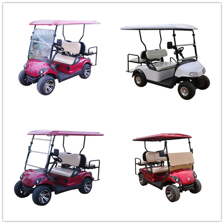 2+2 seats gas or electric golf cart with many color for choice and factory wholesale prices