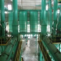 100TD hot sale palm edible oil mill