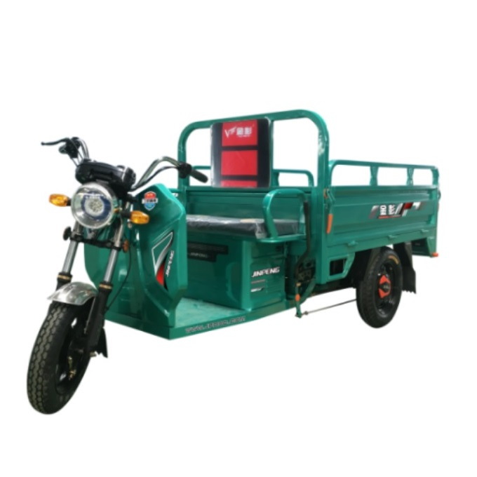 New Style 3 Wheel Power-Assisted Electric Tricycle 1000W 60V Big Powerful Motor E Trike Cargo for Transport
