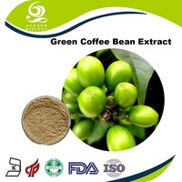 Made in China 800mg Pure Green Coffee Bean Extract