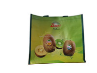 BSCI audited factory promotional foldable reusable pp woven non woven laminated shopping bag