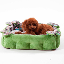 New Design Green Rectangular Luxury Pet Dog Sofa Small Dog Bed