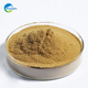Autolyzed Yeast Powder brewer yeast,high quality protein 60% dry yeast for animal feed