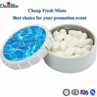 best price fresh candy mint for promotion event