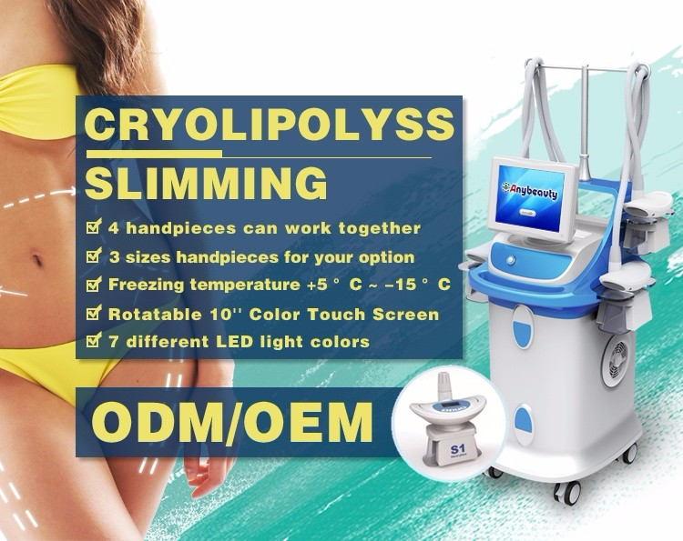 Anybeauty 4 handle pieces cryolipolysis slimming machine slimming equipment for salon use