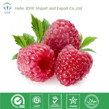 Natural Made 98% Raspberry Ketone Powder, CAS: 5471-51-2