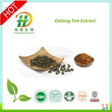 GMP factory supply oolong tea extract, oolong tea powder