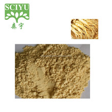 Hot sale Korean Red Ginseng Root Extract/Korea Ginseng Extract Ginsenoside 5%-80%