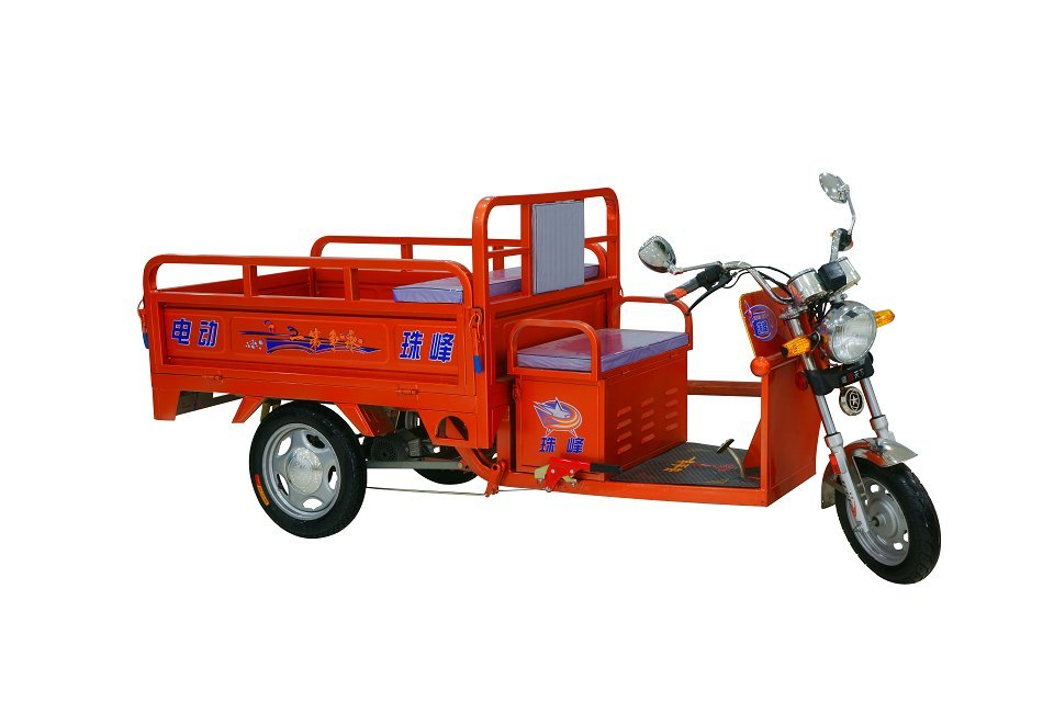 small battery rickshaw with chager price