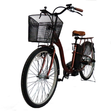 High Performance Cheap Importer Electric Bicycle