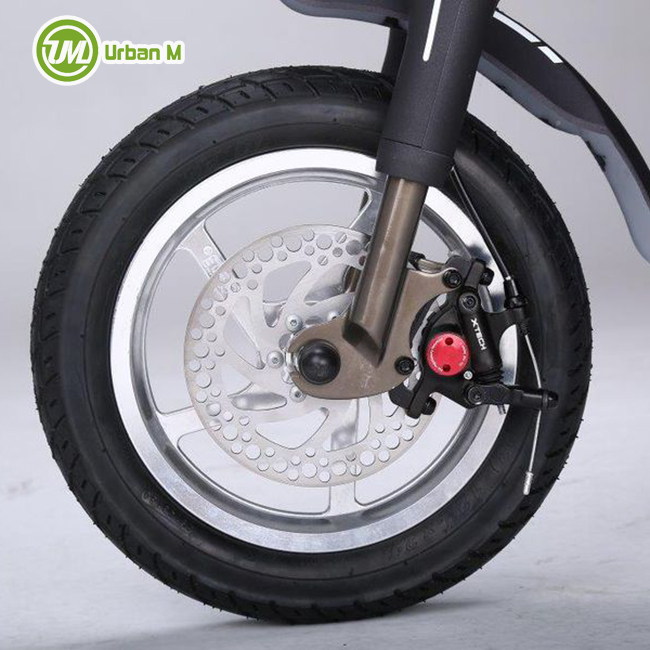 150 KG Folding Brushless DC Motor Electric Bike Scooter
