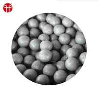 High Quality High Hardness Forged Grinding