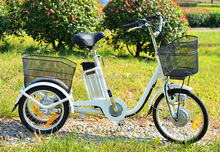 hot sale cheap electric bike Adult no folding electric tricycle SDP704Z BSKT01