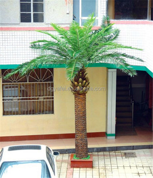 6m tall decorative home decor plastic washington artificial date palm trees ZLS05
