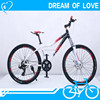 Cheap Chinese Complete Mountain Bike Aluminum Bicycle