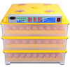 Brand new price poultry chicks with high quality eggs hatching machine
