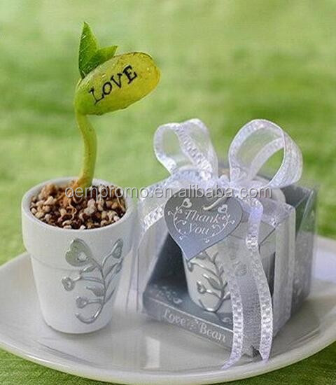 DIY wishes on Magic Bean for craft gift