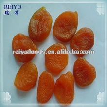 fresh dried apricots for sale