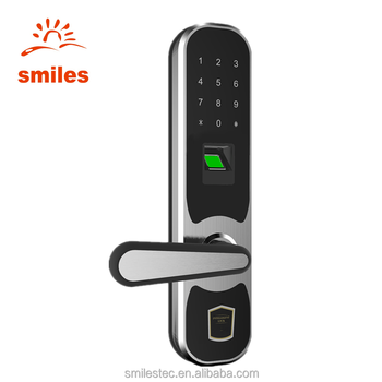 Remote Control Keyless Electronic Fingerprint Digital Lock With Keypads For House