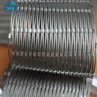 For Multiple Uses 50 micron stainless steel wire mesh filters