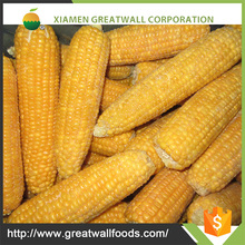 2016 frozen food supplier frozen sweet corn import and export