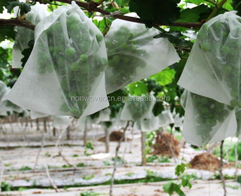 factory pp spunbond nonwoven fabric winter frost plant protection bags
