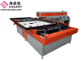 Wuhan hasary Die Board Laser Cutting Machine With fda 400W 300W