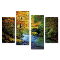 Scenery Colourful forest brook canvas prints