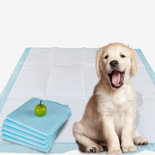 High quality ready made disposable blue pet training and puppy pads, regular