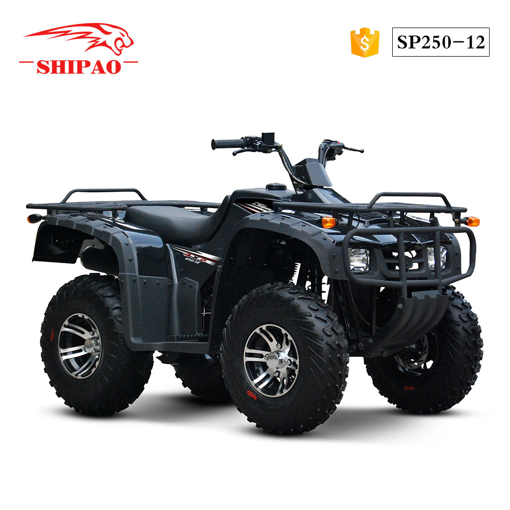 SP250-12 Shipao new tech engine king quad atv