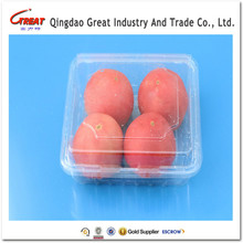 food grade PET packing disposable transparent fruit and vegetable tomatoes packaging trays container