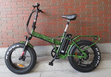 QUEENE/OEM brand HOT SALE 36v 250w electric folding bike,e-bike cargo