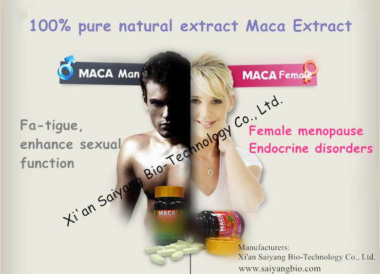 Pure Natural Maca Extract powder , A Herb Medicine To Enlarge Penis/maca root powder