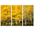 Forest Painting for Living Room Autumn Birch Tree Landscape Canvas Multi Panels Wall Art Printing Artwork