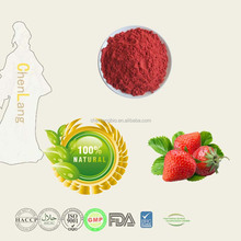 Fresh Fruit Strawberry Extract Powder 10:1 Min Order 1Kg