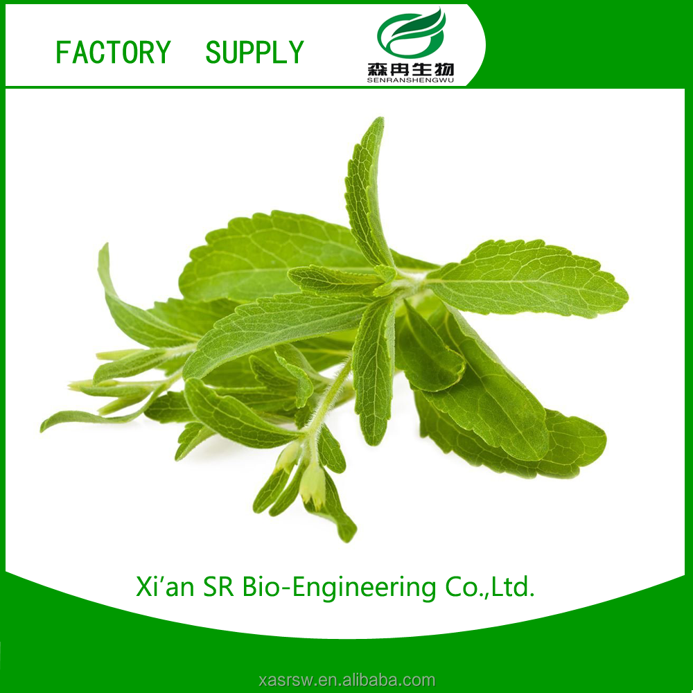 SR Manufacture Supply Stevia Extract 90% Stevioside Pure Powder