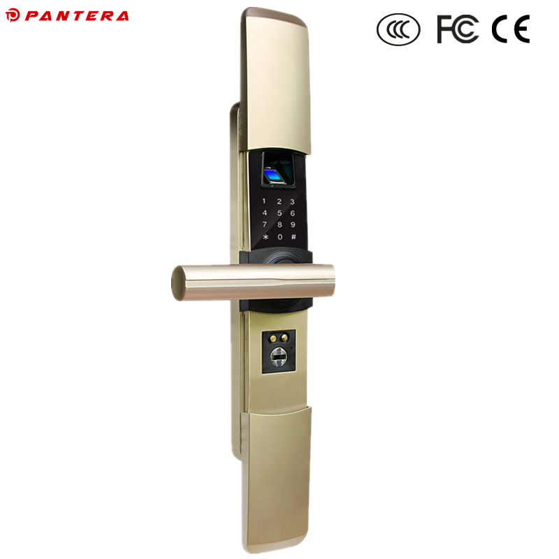 Fingerprint+Password Keyless Italian Home Security System Fingerprint Body Lock Manufacturers in China