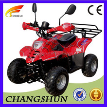 500W Removable Batteries Adult Electric Mini Quad Bike ATV With CE