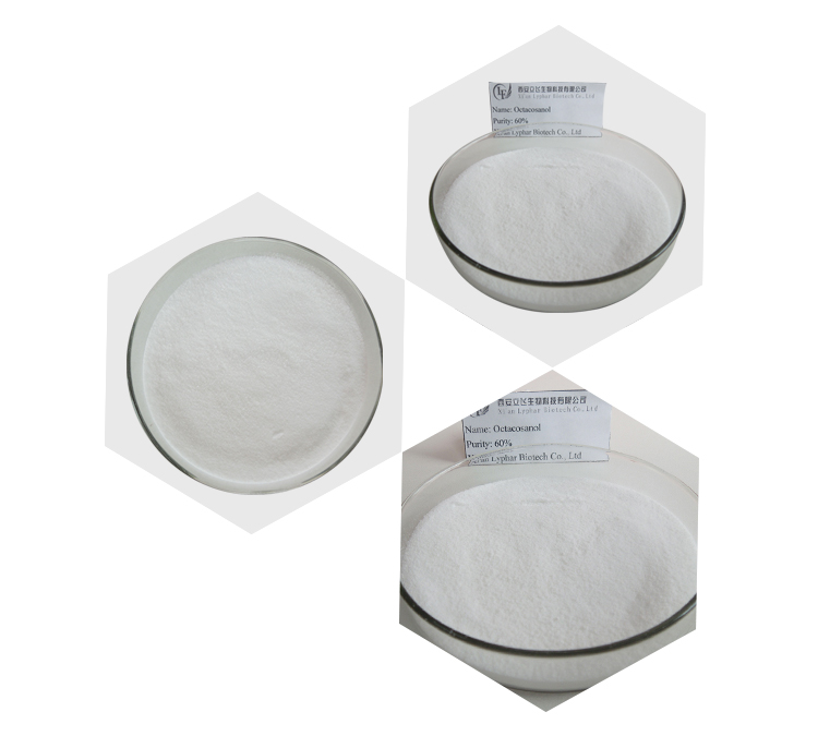 High Quality Health Supplement Octacosanol