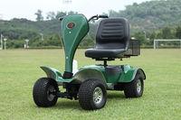TOP OEM 24V Cheap Electric Golf Cart with golf bag holder and golf umbrella holder