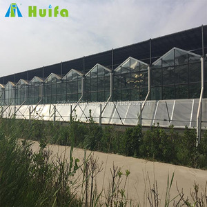 Hot Sale Multi-span Galvanized Steel Structure Commercial Glass Greenhouse