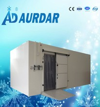 Cold storage room walk in cold room price for frozen fish ,chicken , seafood , meat blast freezer