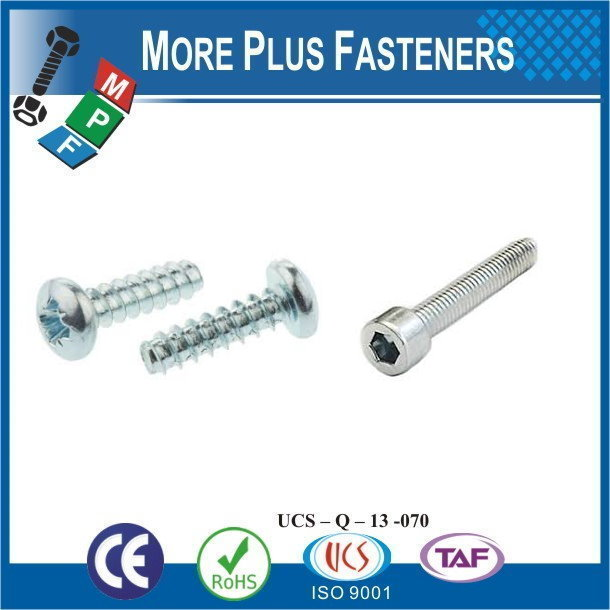 Taiwan Stainless Steel 18-8 Copper Brass Aluminum Brass PT Thread Forming Screw Pan Head Pozidrive Slotted