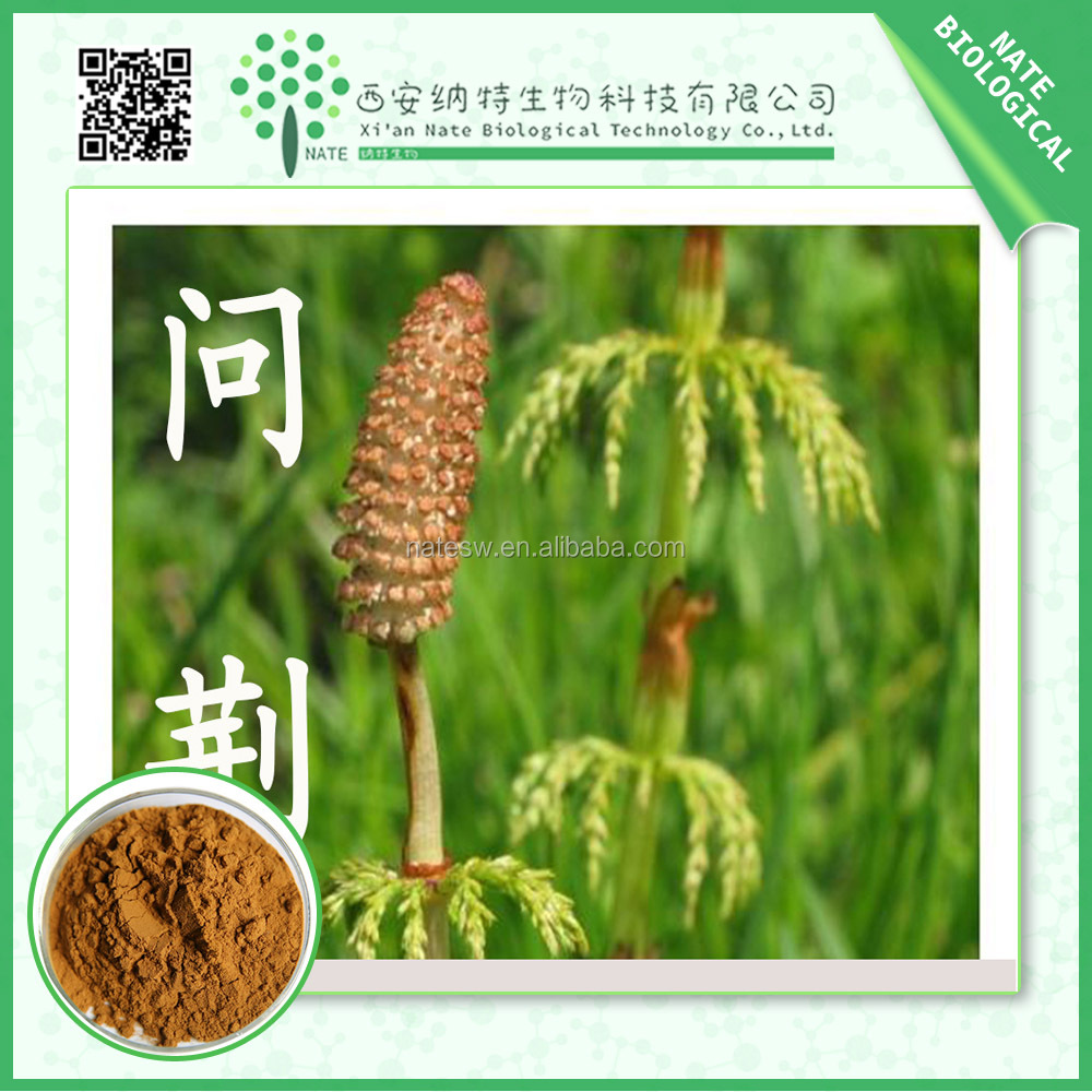 Natural Horsetail powder extract Silica acid Horsetail P.E.7% Silica Acid