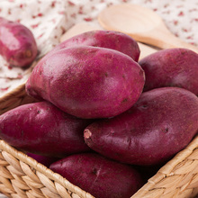 Hot Sale Fresh Healthy Purple Sweet Potato