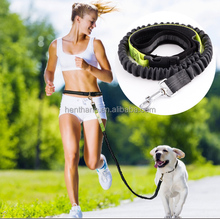 Reflective hands free Bungee dog leash for running
