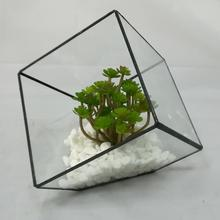 High quality indoor plant metal frame geometric glass terrarium
