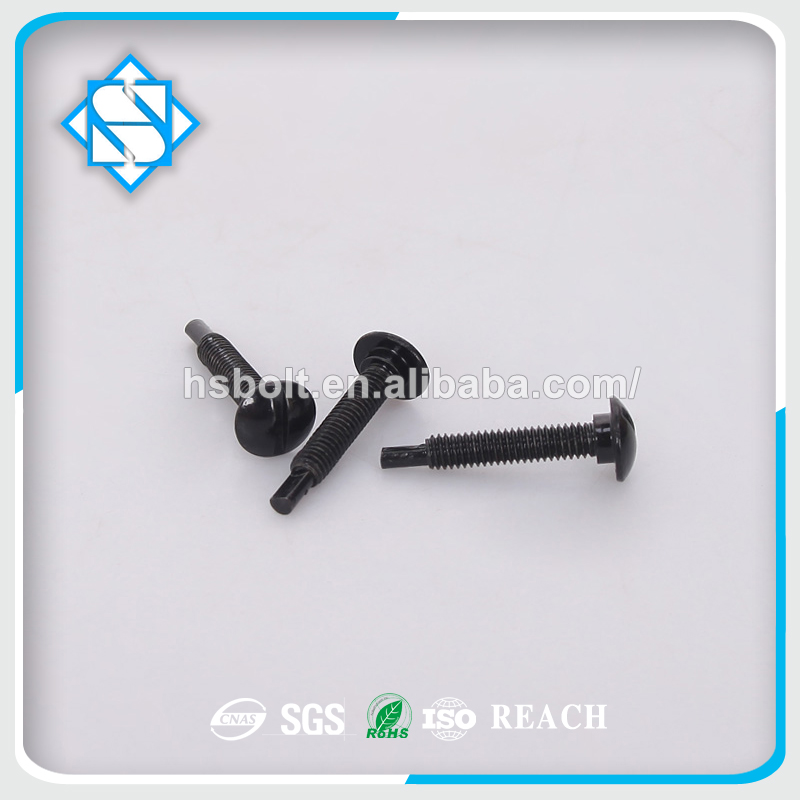 Staninless Steel 304 Black Round Head Square Neck Carriage Bolt