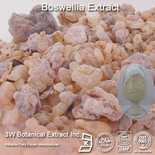 100% Natural Boswelia Serrata Extract (Boswellic Acid )
